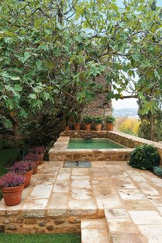 Everybody likes luxury pool styles, aren't they? Here are some leading checklist of deluxe pool photo for your inspiration. These wonderful swimming pool design suggestions will change your yard into an exterior sanctuary. Small Backyard Pools, Small Pools, Outdoor Pool, Outdoor Gardens, Diy Swimming Pool, Swimming Pool Designs, Diy Pool, Indoor Swimming, Above Ground Pool
