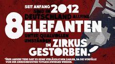Meiningen: ban on wild animals in circuses