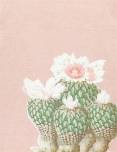 Creatures of Comfort Lilith Dress- Silk Linen Artichoke Cactus Print, Gypsy Style, Artichoke, Silk Dress, Floral Prints, Creatures, Pink, Color, Inspiration