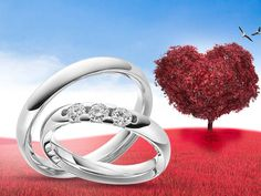 ❤️Lentekriebels op #WeddingWednesday Wat zou dit gevoel nog kunnen versterken? Natuurlijk een schitterende ring aan uw vinger. 💍🤗  www.123gold.nl/artikel/Q-1487-6.html