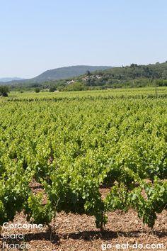 Corconne, Gard, France.