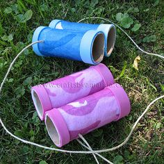 Toilet paper roll binoculars- use on walks to spy new plants and animals