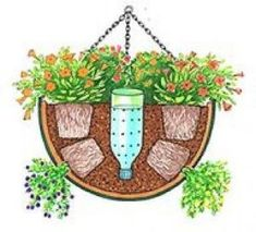 DIY Self-Watering Hanging basket by leisa.barnes