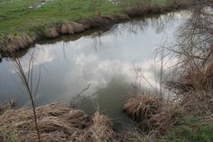 Another shot of clouds in the water / ancora nuvole nell'aqua