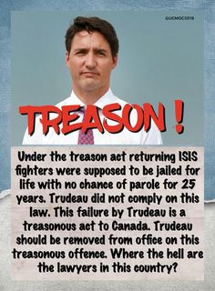 Political Quotes, Political Cartoons, Justin Trudeau, Truth Hurts, Fun Facts, At Least, How To Remove, Humor, Words