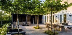 Villatuin Tuinarchitectuur Rotterdam martin veltkamp