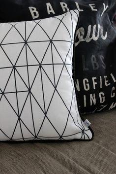 Vinttikissa: Tyynylöytö