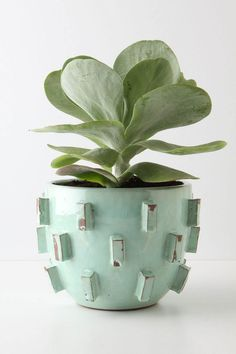 aqua ceramic pot with rectangles. perfect home for a succulent .. The Shiny Squirrel
