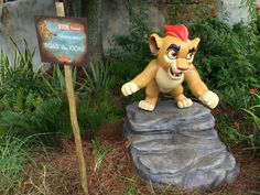 Roar with KION durin