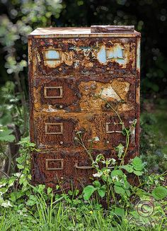 chasingthegreenfaerie | Outdoor Office. Found in an overgrown yard in...