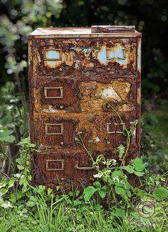 chasingthegreenfaerie | Outdoor Office. Found in an overgrown yard in...