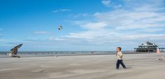 https://flic.kr/p/Le7tYM | Runing after the seagulls. | Blankenberge strand…
