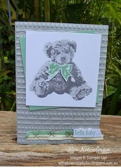 Baby Bear by Stampin' Up!