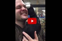 This kitty is THE definition of a Lovebug!  Insanely Affectionate Kitten! - Love Meow