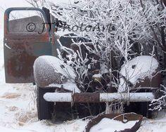 Title: Broke Down By: JTPhotoArt  Description: Native vegitation has overtaken an old truck once used as a feed spreader.