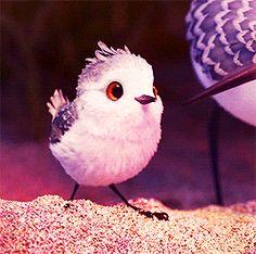 Piper Pixar short film Fluffy Animals, Nature Animals, Cute Baby Animals, Animals And Pets, Piper Pixar, Pixar Shorts, Gifs, Purple Bird, Cute Fantasy Creatures