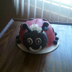 front view of my ladybug cake