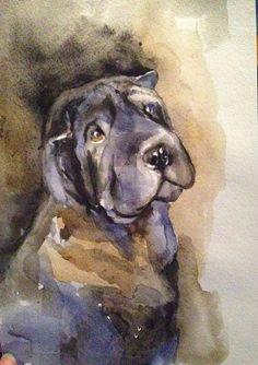 Shar Pei Art. Watercolor Shar Pei painting.