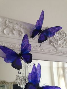 Hey, I found this really awesome Etsy listing at https://www.etsy.com/listing/159071327/3-luxury-amazing-in-flight-butterflies