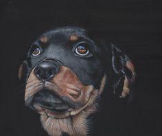 Pet Portrait Custom painting dog art Acrylic by LouiseDeMasi