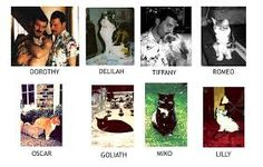 Картинки по запросу feliz cumpleaños dos gatos