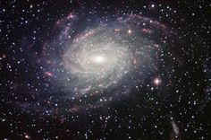 Galaxies Grow By Snacking. Evidence from observations and computer simulations supports a picture of galaxy growth that isn't dominated by the rough-and-tumble crashes of big galaxies.