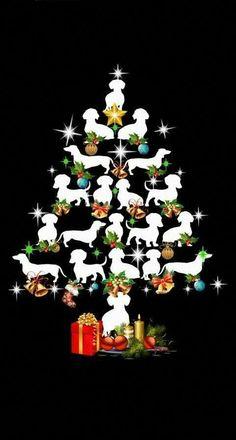 Dachshund Breed, Dachshund Art, Daschund, Christmas Dog, Vintage Christmas, Christmas Dachshund, Cãezinhos Bulldog, Clever Dog, Most Popular Dog Breeds