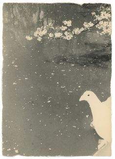 Photographie en noir et blanc de l'artiste japonais Masao Yamamoto. Oiseau au bord d'un lac.