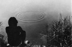 Gino De Dominicis, Tentativo di far formare dei quadrati invece che dei cerchi attorno ad un sasso che cade nell'acqua, 1969. Video perduto.