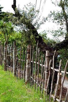 séparation jardin cloture bois