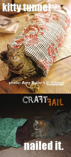 Holy crap check out this website, its totally a bunch of peoples screwed up attempts at crafts, it made me laugh so hard i cried. Kitty Tunnel – Chucked It | CraftFail