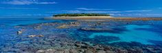 CORAL ISLAND LADY MUSGRAVE - Peter Lik