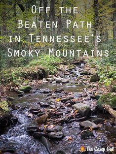 Off the beaten path in Tennessee's Smoky Mountains - The area surrounding Tennessee's Smoky Mountains has a touristy reputation, but just 30 minutes from the tourist town of Gatlinburg, there's a small town called Cosby that has a lot to offer. Camping Places, Camping Spots, Places To Travel, Places To Go, Vacation Places, Vacation Spots, Gatlinburg Tennessee, Tennessee Vacation, East Tennessee