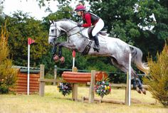 Holly and Ordnance Hill at Munstead September 2016
