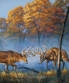 Painting by internationally collected artist, Darrell Bush. Wildlife Paintings, Wildlife Art, Deer Paintings, Wild Life, Deer Wallpaper, Male Deer, Deer Pictures, Deer Pics, Big Deer