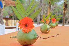 Colorful Coconut Centerpieces - Playa Manzanillo. Guacalito de la Isla. Nicaragua