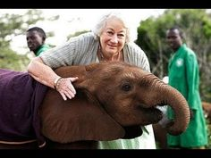 Mrs. Sheldrake 50 years of hands on devotion ♡ now 80 and still Africa's Elephant Queen - YouTube