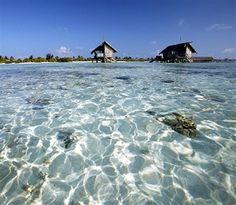4. Maldive