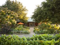 The garden doubles as Saintsbury's fair-weather tasting room, overlooking the Carneros vineyards. Photo: Courtesy Of Saintsbury Vineyards San Francisco To Do, Dallas, Napa Valley Wineries, Wine Glass Rack, Tasting Room, Stay The Night, California Travel, Wine Country, Great Places