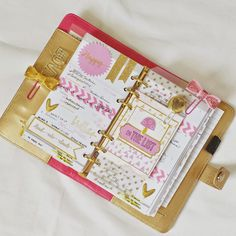 Bits and Pieces...: Crushing on my Gold and Light Pink Planners