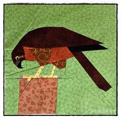 Karearea (NZ falcon) bird by Sunshine x Pattern by Tartan Kiwi Paper Piecing Patterns, Quilt Block Patterns, Pattern Blocks, Bird Quilt Blocks, Bird Applique, Machine Applique, Animal Quilts, Foundation Paper Piecing, Fabric Birds