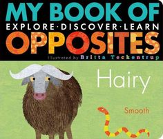 My Book of Opposites: Explore, Discover, Learn