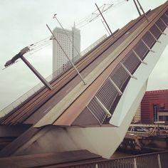 The bridge is open #diagonal #cityscapes #rotterdam