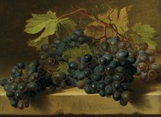 Gerard van Spaendock (1746-1822), Black grapes on a Marble Ledge.