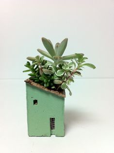 Cute little planter.