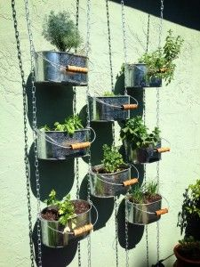 Grow Your Own! Herb Wall, Grow Your Own, Healthy Eating, Herbs, Garden Ideas, Plants, Workout, Rock, Eating Healthy