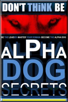Be Alpha Dog