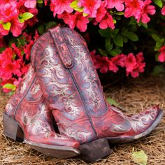 Dan Post Women's Zephyr Cowgirl Boots - Red  http://www.countryoutfitter.com/products/31238?lhs=u_p_p_n_alhb=COlhc=womens_bootslhg=dan_postutm_source=pinterestutm_medium=social