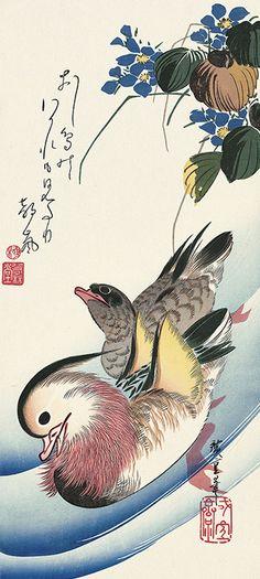 鴛鴦|歌川広重|広重花鳥大短冊撰|浮世絵のアダチ版画オンラインストア