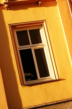 总有一扇属于你的窗。